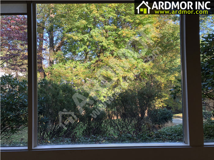 Wood_Window_Foggy_Glass_Replacement_in_Lower_Merion_Township_PA_after
